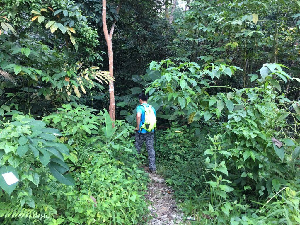 Hiking di Bukit Tabur Far East dan Tabur Extreme