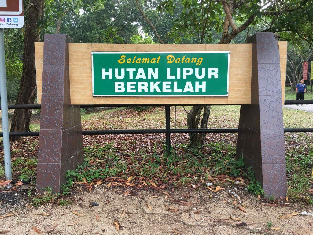 Air Terjun Berkelah 7 Tingkat Maran Pahang