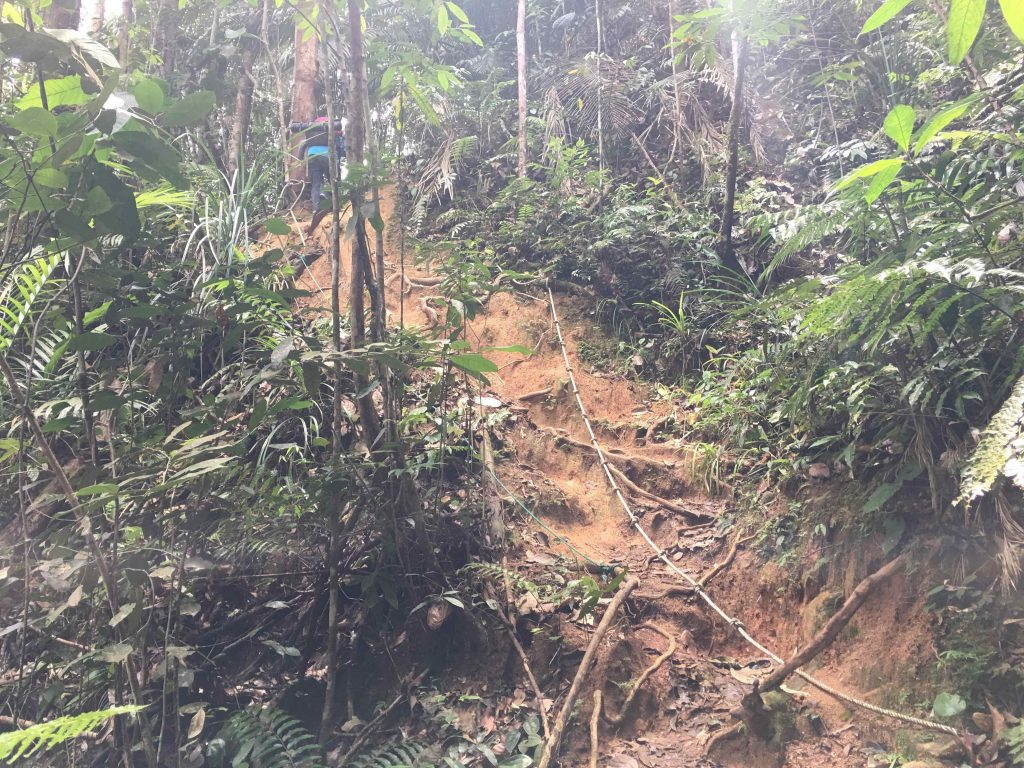 Hiking di Gunung Rajah via Bentong Pahang